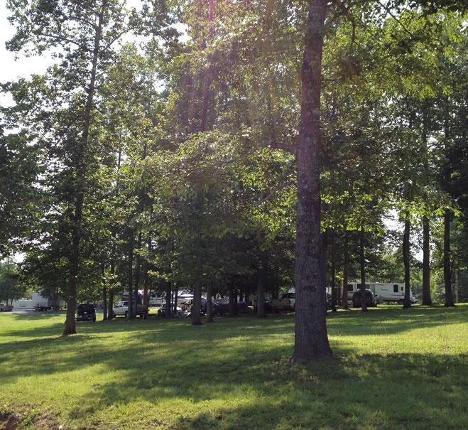 Where To Find Camping Sites At Norris Lake Norris Lake Tn