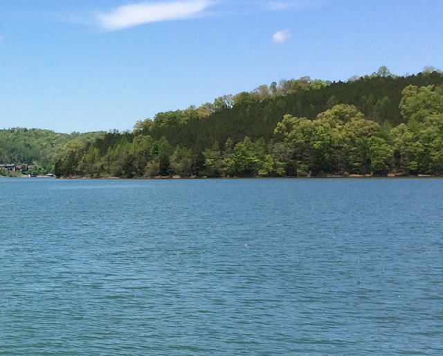 Rock Harbor Norris Lake