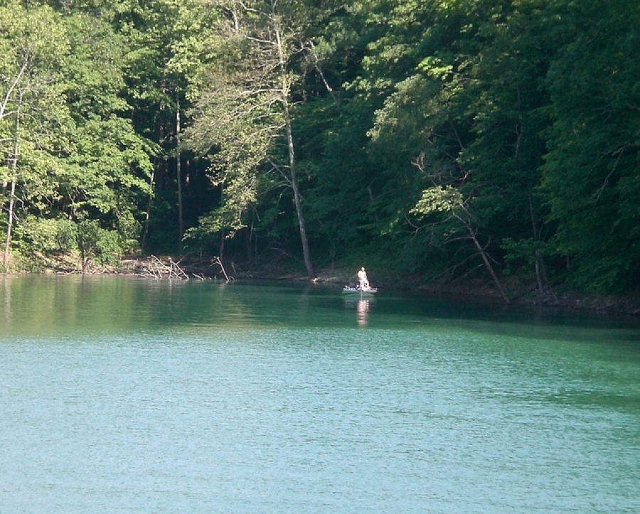 Norris lake fishing guide for your tennessee vacation for Norris lake fishing