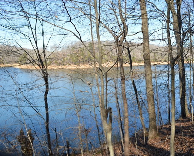 Lakeside Trail with views of Norris Lake