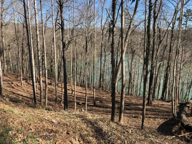 Lot #22 Cove Pointe Rd Lafollette, TN