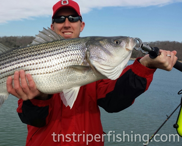 Jay's Striper Guide Service on Norris Lake