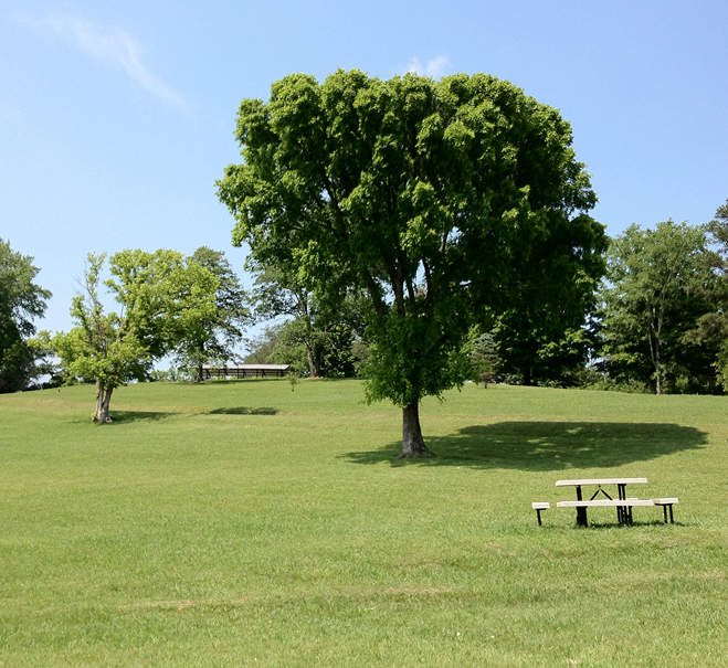 anderson-county-park-norris-lake-picnic-area